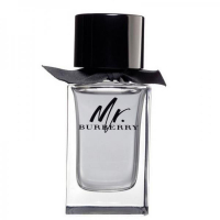 Burberry Mr Burberry Туалетная вода 100 ml тестер